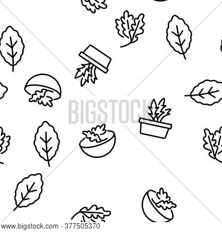 Arugula Or Rucola Vector Seamless Pattern Thin Line Illustration