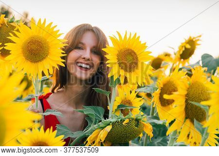 Happy Woman With Sunflower Enjoying Nature And Laughing On Summer Sunflower Field