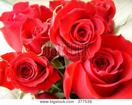 Red Roses Bouguet