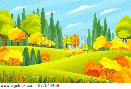 Summer Field Landscape. Background Of Italian Countryside. Nature Hills Fields Blue Sky Clouds And S