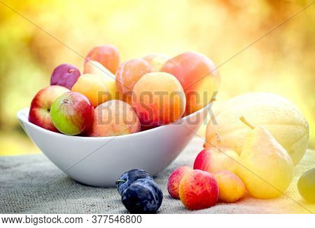 Seasonal Organic Fruits In Bowl On Table Outdoor