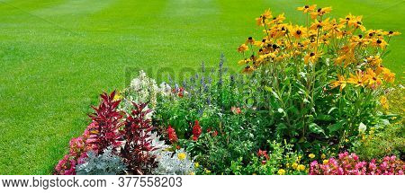 Multicolored Flowerbed On A Lawn. Horizontal Shot. Wide Photo.