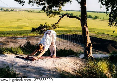 Attractive Young Woman Doing Asana In Park Adho Mukha Shvanasana On Top Of Rock Background Of Beauti