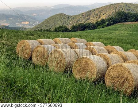 Bales Of Hay In Field Close-up Across The Mountains. Agricultural Industry. Rural Scene