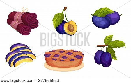 Plum Foodstuff With Sweet Pie And Fruit Candy Vector Set