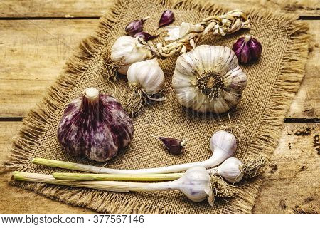Whole Unpeeled Garlic Heads And Cloves. New Harvest, On Sackcloth, Wooden Boards Background, Close U