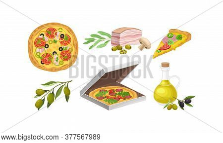 Pizza And Ingredients With Olives And Bacon Slab Vector Set
