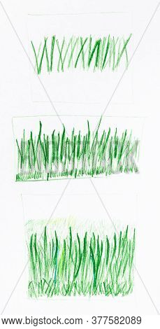 Successive Training Sketches Of Green Grass Hand-drawn By Green Pencil On White Paper