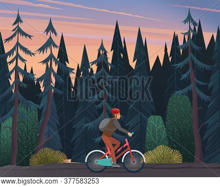 Lonely Cyclist Rides A Bicycle Through A Dense Coniferous Forest. Gloomy Landscape Of The Forest. Tw
