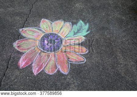 Sidewalk Chalk Art Representation Of Colorful Daisy.