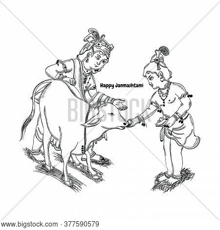 Happy Janmashtami Festival Holiday - Lord Krishna Giving Food To Cow For Eat With His Brother Balara