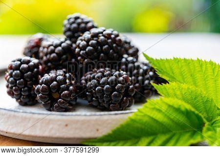Ripe Healthy Antioxidant Black Currant Or Bramble Berries Close Up