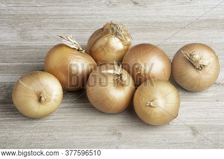 A Bunch Of Fresh, Authentic Sweet Southern-grown Onions Artfully Arranged On A White Painted Rustic