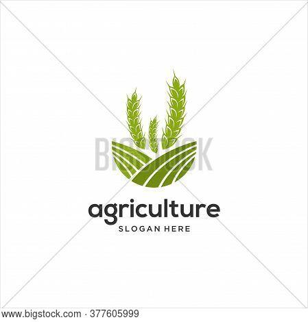 Farm Logo Template, Vector Logo Design For Agriculture, Agronomy, Wheat Farm, Rural Country Farming