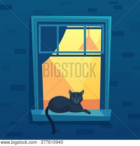 Cat Lying In Lit Up City Apartment Open Window At Night Time. Black Kitten Character Having Rest On