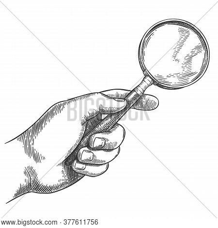 Engraved Hand Holding Magnifying Glass. Retro Hand Drawn Detective Magnifier, Search Sketch And Anti