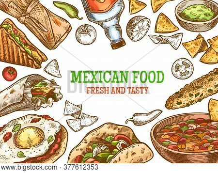 Mexican Food. Hand Drawn Traditional Mexican Tequila And Dishes, Burrito, Tacos And Nachos, Enchilad