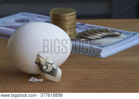 Five Dollar Bill Hatching From Egg And A Stack Of Hundred Dollar Bills And Coins On Natural Backgrou