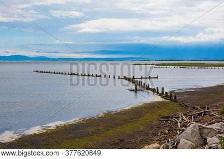 The Adriatic Sea Near Marina Julia In The Wetland Area Of Friuli-venezia Giulia, North East Italy