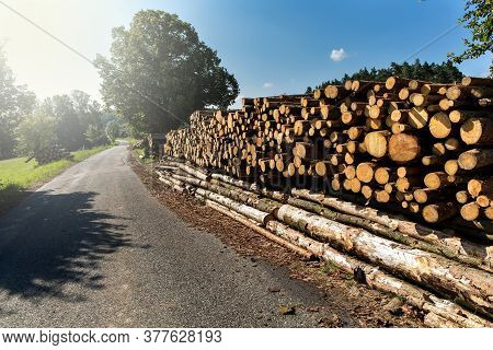 Firewood. Wall Of Stacked Wood Logs By The Country Road, At The Edge Of The Forest. Pile Of Wooden L