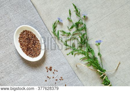 Flax Seed And Blooming Flax On Linen Cloth
