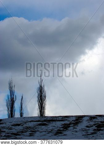 Arable Farming Under Snow Cover, White Landscape In Winter Time