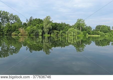 The Shore Of The Pond Early In The Morning. The Shore Of The Pond Early In The Morning. Trees And Cl