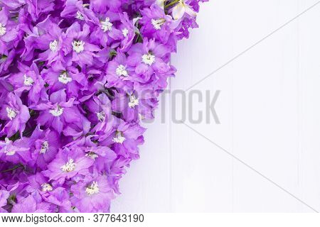 Frame Made Of Lilac Delphinium Flowers On A White Plank Background. Top View. Copy Space.