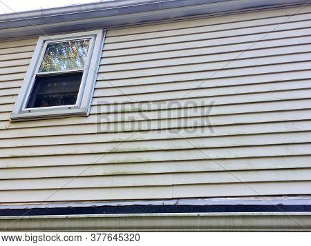Window With Moldy On Vinyl Siding On House