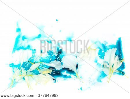Tender Tiny White Flower Petals Floating In Blue Cyan Aquamarine Watercolor Paint. Valentines Day Ca