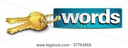 Schlüsselwörter Schlüssel für erfolgreiche Website-Optimierung in Meta-Daten