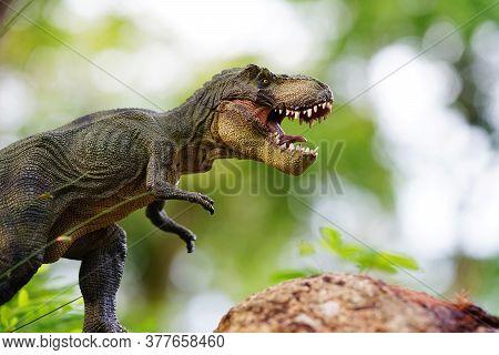 Tyrannosaurus Rex Dinosaurs Toy On Nature Background.