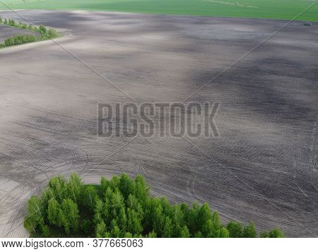 Green Grove Near A Plowed Agricultural Field, Aerial View.