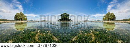 An Ocean Underwater Reef With Sun Light Through Water Surface. Seagrass Field