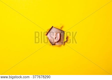 Male Ear Peeking Out Of The Torn Hole Yellow Background. Perception Of Sounds