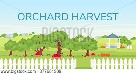 Orchard Harvest Banner Flat Vector Template. Seasonal Farming, Gardening Brochure, Booklet One Page