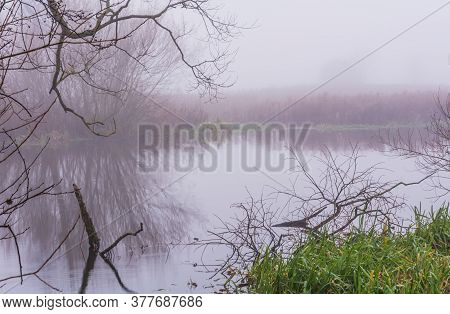 Misty, Calm Morning At A River In Scania, Southern Sweden. Reflections In The Water