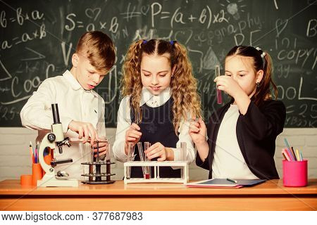 Test Tubes With Substances. Formal Education. School Laboratory. Group School Pupils Study Chemical