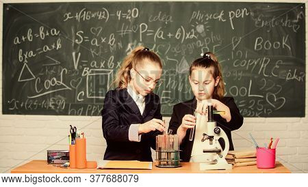 School Experiment. Science Concept. Gymnasium Students With In Depth Study Of Natural Sciences. Girl