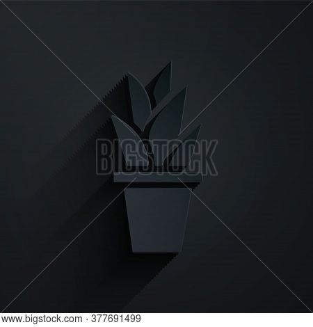 Paper Cut Plant In Pot Icon Isolated On Black Background. Plant Growing In A Pot. Potted Plant Sign.