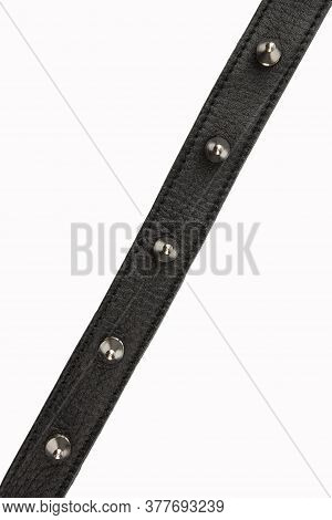 Selective Focus Black Belt With Spikes On A White Background, Close Up With No Shadows. Black Belt W