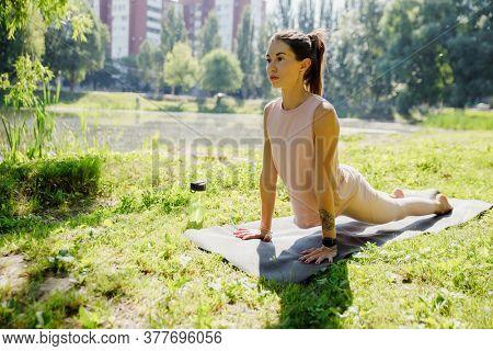 Young attractive woman practicing yoga in nature, doing yoga exercise - urdhva mukha shwanasana