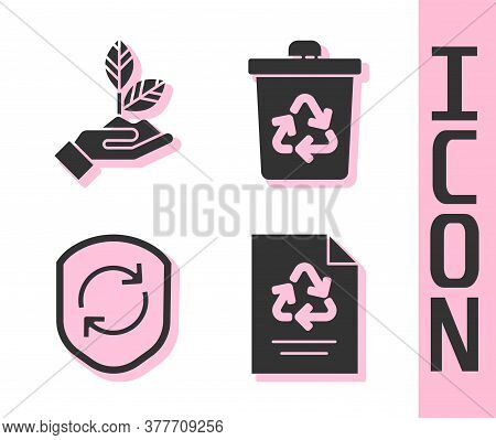 Set Paper With Recycle, Plant In Hand, Recycle Symbol Inside Shield And Recycle Bin With Recycle Ico
