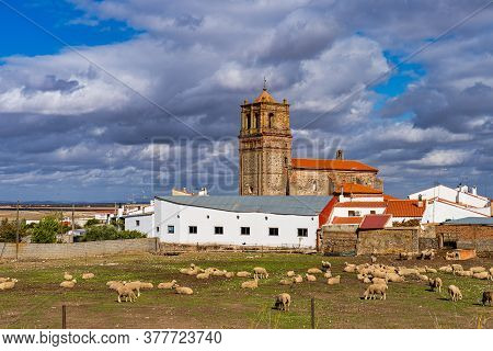 Church In The Little Village Casas De Reina In Badajoz Province, Extremadura, Spain