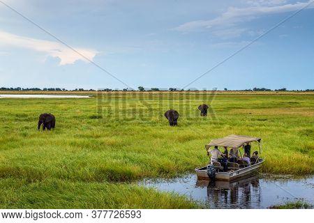 Chobe National Park, Botswana - April 7, 2019 : Tourists In A Boat Observe Elephants Along The River