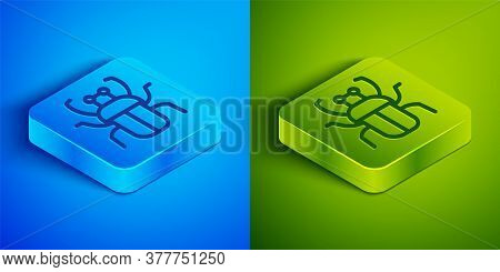 Isometric Line Stink Bug Icon Isolated On Blue And Green Background. Square Button. Vector
