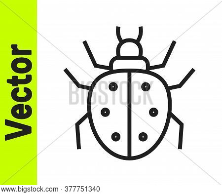 Black Line Mite Icon Isolated On White Background. Vector