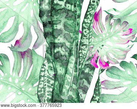 Summer Floral Background. Botanical Forest Illustration. Exotic Swimwear Design. Hawaii Aquarelle Pr