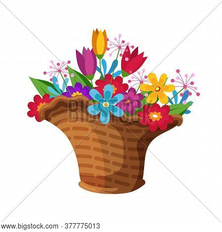 Blooming Spring Colorful Flower Bouquet Composition In Wicker Basket For Sale. Floristic Shop. Handm