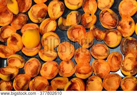 Freshly Harvested Pitted Apricots Are Sun Dried.